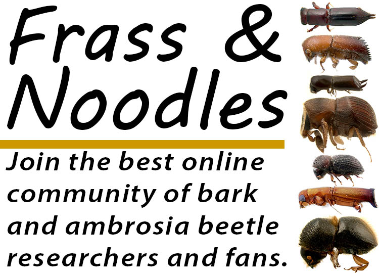 Join Frass & Noodles!